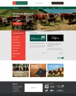 NZ Hereford Association Website development